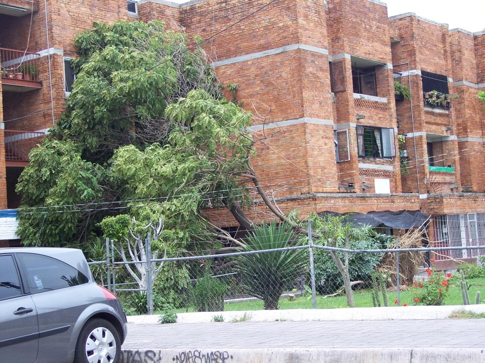 Tormenta en Guadalajara